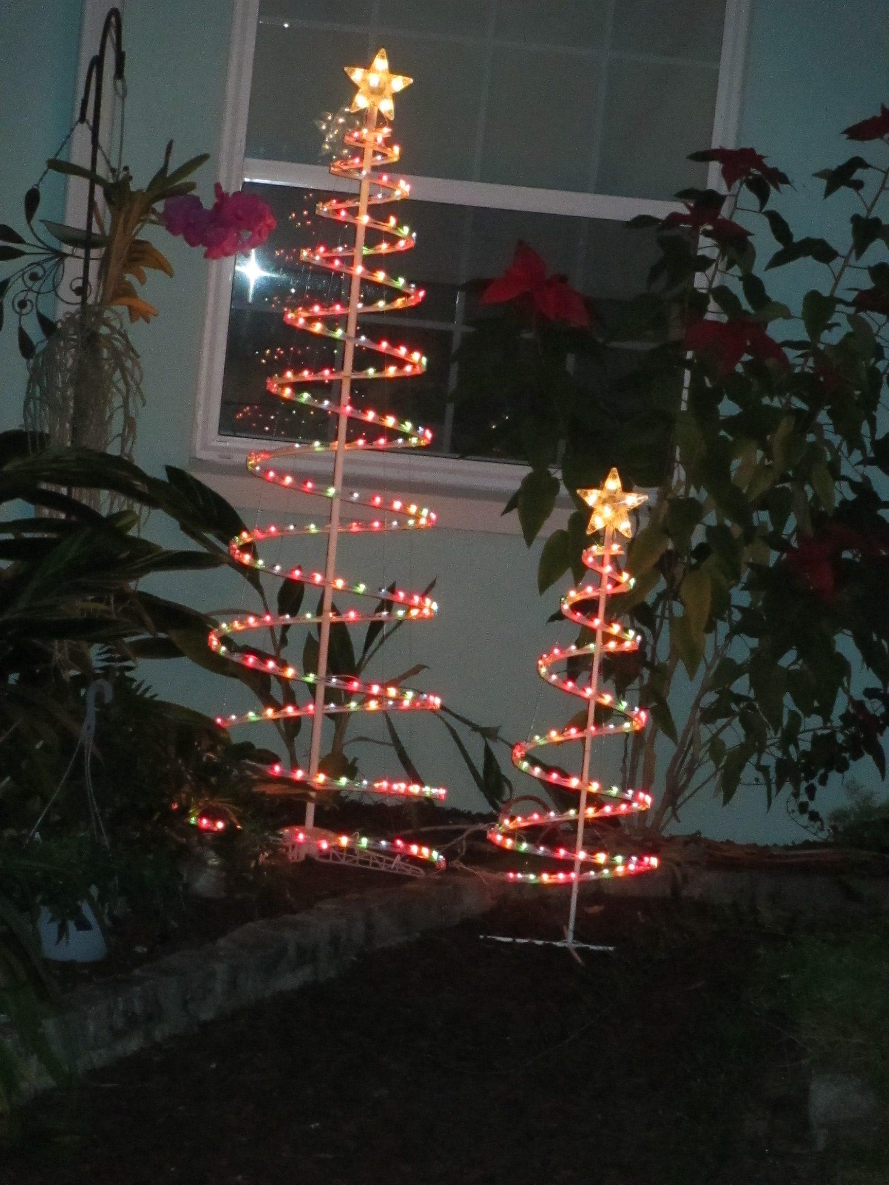 Christmas Elf & the Writer